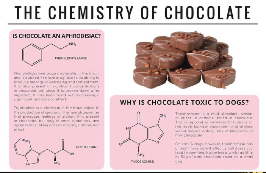 What in Chocolate Makes It an Aphrodisiac